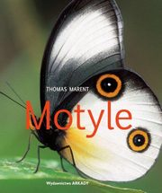Motyle, Marent Thomas